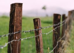 agricultural fencing in African countries