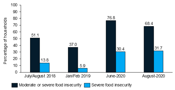 Households Food Insecurity Experience